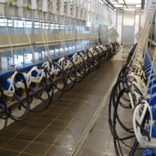 Средства для промывки доильного оборудования